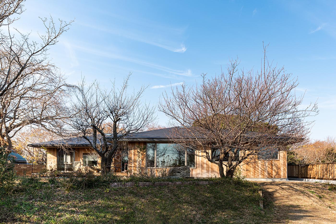 平屋、外壁、レッドシダー、設計事務所、建築家、大磯、神奈川